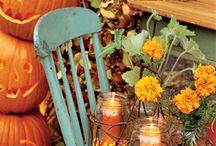Fall Decor / by Megan Jones