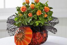 Arrangement floral / Couronnes et arrangements  floraux