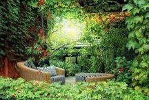 yeşil huzur