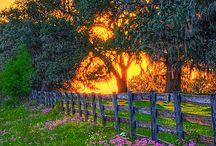 Fences, gates, barriers
