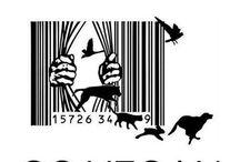 Live Cruelty Free