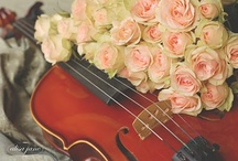 Violins & Roses / A rose is to beauty as a violin is to music......what could be more romantic? / by Jeri Caudle