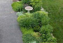 Garden / Edges