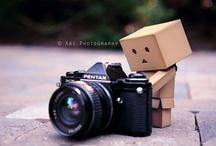 Photographs.//
