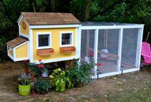 [ Home ] Chicken Coop