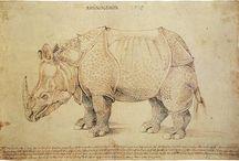 Dürer Albrecht