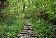 The Path Less Traveled / Because, oftentimes, we must create our own path.
