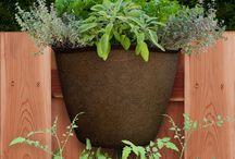 Relaunching Garden365 / http://www.garden365.com/