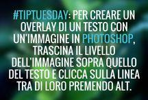 Photoshop Masters / Consigli, trucchi e scorciatoie dai nostri docenti per sfruttare al meglio Photoshop.