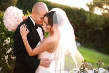 Photography- Wedding / by Carrie Kimmel