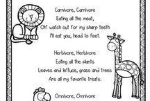 herbivore/carnivore