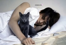 3-Celebs and their cats, dogs or babies / The softer side of celebs / by Katrina Smith