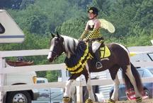 Horse dress ups