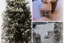 Talvi / Talvikuvia