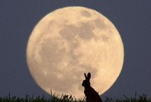 Easter - Spring Equinox