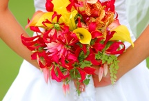 Bouquets and Boutonnieres / Wedding bouquet and boutonniere ideas.  Flowers for the wedding party.