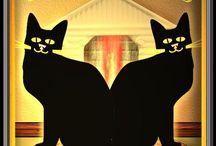 Koty we wnętrzach