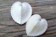 She Sells Seashells By The Seashore