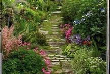 Down the garden path / by Amy Hayes