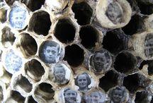wasp nest art