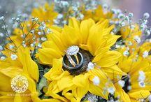 Sunny day wedding! / Photography by Life Long Studios www.lifelongstudios.com