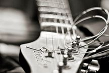 Fender / Raccolta di chitarre Fender.