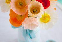 Pretty Things / by Amy Gomez