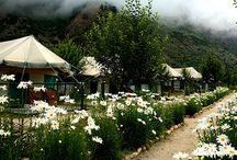 Banjara Group of Hotels / Banjara Hotels & Resorts - Himachal