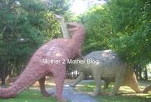 Birthday - Dinosaur / by ac2steachk