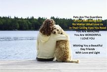 Pets Quotes