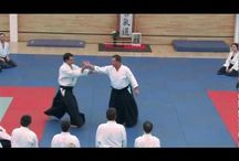 Aikido/Martial Arts