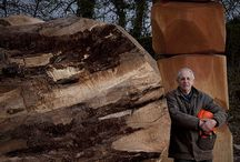David Nash / David Nash, OBE RA (born 14 November 1945) is a British sculptor based in Blaenau Ffestiniog, North Wales. Nash has worked worldwide with wood, trees and the natural environment.