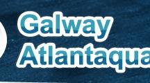 Family Activities in Galway / Family Activities in Galway