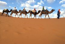 Travel Morocco / Morocco Off Road tour with excited blend of Local community meeting and adventure filled Morocco will leave you with its long lasting memories  Join FB Group: https://www.facebook.com/Born-Xplorer-486294748189690/