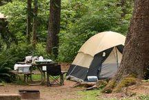 Camping / by Melissa Laninga