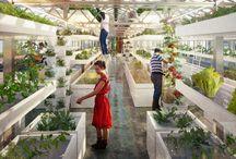 Gardening + Farming