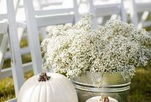 Fall Wedding / Ideas and inspiration for your perfect Fall Wedding