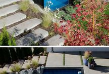 Container  swimming pool