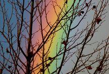 Gods amazing grace / by Beverly N Kenny Gross