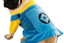 Halloween costumes for dogs / Halloween costumes for pets, cats, dogs  #halloween #costume #dogs #dog #costumes
