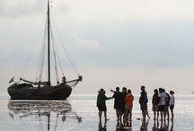 Zeilen op de Waddenzee / In 2015 zeilt ons schip een deel van het seizoen op de Wadden. We maken dagtrips met groepen en individuele opstappers naar onze favoriete zandbank. Meer weten: http://www.zuiderzee.eu - Alle hier geposte foto's zijn gemaakt door de bemanning van de Zuiderzee.