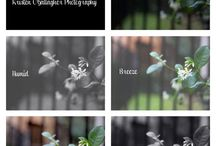 KO Photo Shop & Design / Actions/tools for photographers as well Art prints and designs for children and home.  / by Kristen O'Gallagher