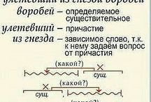 Русский 7