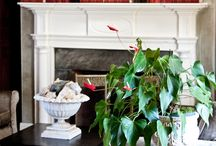 fireplace mantels / by Taylor Greenwalt Interiors
