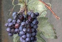 Виноград,вино