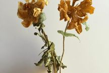 Fabric and paper flowers / Artists who take flowermaking to a next level. / by Puur Anders