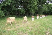 "Beekeeping & Bee ""Stuff"""