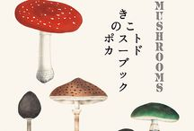 Postcard Book of Mushrooms (きのこポストカードブック) / This book is a postcard collection of mushroom and fungi paintings by European and Japanese naturalists  and painters in 18th to early 20th century.