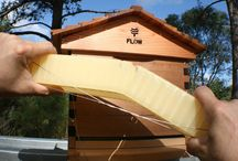 Flow Hive Beehive Photo Review - Mahakobees / Go with the flow - #FLOW HIVE is finally here! Take a look at our pictures of this close up inspection. The Flow hive beekeeping video review will be uploaded shortly. So bee sure to visit us on YouTube: https://www.youtube.com/mahakobees. What about you? Did you invest into this revolutionary Flow hive #beehive? Have you seen the Flow Hive? Have you used the Flow hive? What are your thoughts? Is it a winner or do you have concerns.