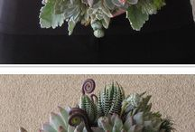 Bouquet inspirations / by Noonan's Wine Country Designs
